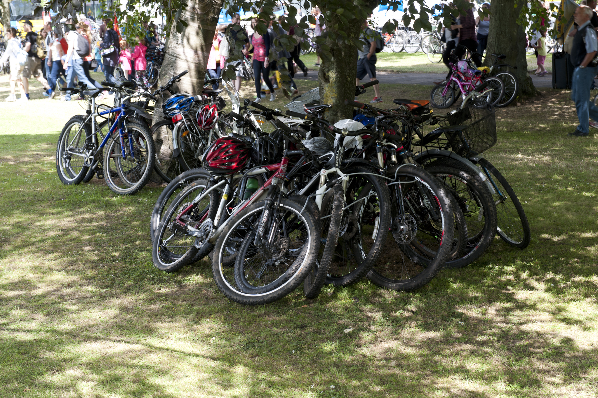 Most trees and static objects had bikes locked to them..