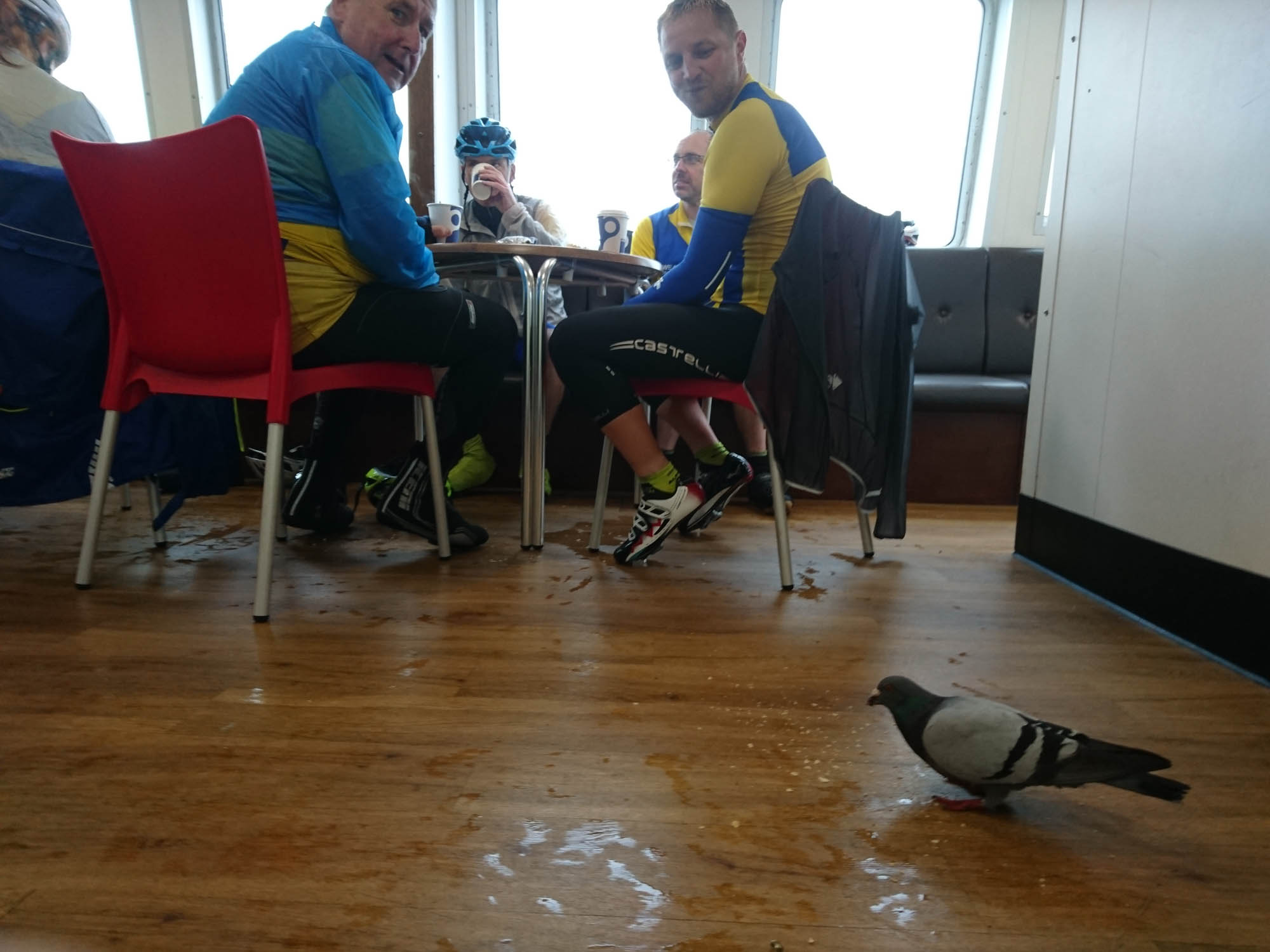 Freeloading pigeon joins Matt and Jim in a relaxed moment on the crossing, sharing jokes and anecdotes.